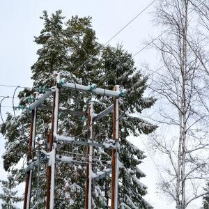 Elledningar och snöiga träd