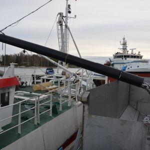 Trålare lossar strömming till fiskmjölsfabriken i Kasnäs.