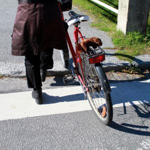 Någon leder sin cykel över vägen