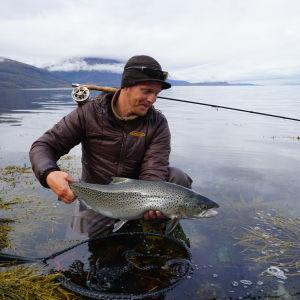Meritaimen kalastajan käsissä Jäämerellä.
