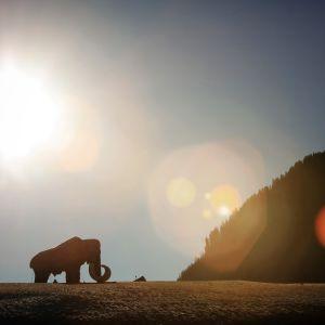Mammutskulptur i Österrike