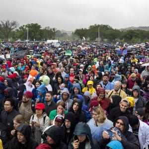 Många deltog i manifestationen USA:s huvudstad Washington.