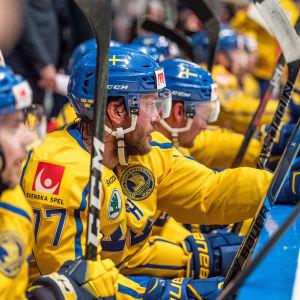 Sveriges herrlandslag i ishockey