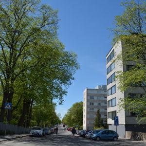 Vy över Kuppisgatan i Åbo med många höghus efter varandra.