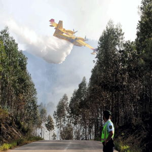 Ett av de nio släckningplanen som kämpar mot eldsvådan.