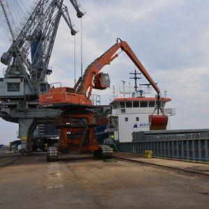 Havre lastas på ett fartyg i Vasa hamn som ska föra den till marknaderna i Tyskland.
