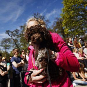 Hundparaden Puppy Parade i Brunnsparken i Helsingfors den 28 maj 2017.
