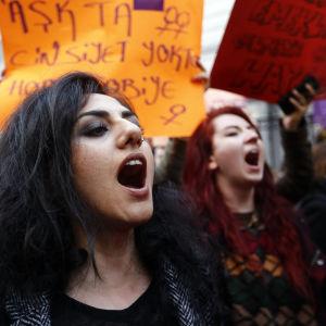 Demonstranter i Istanbul ropar slagord för att protestera mot valresultatet i den turkiska folkomröstningen 2017.