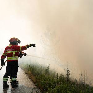 Brandmän i Cadafaz i regionen Góis i Portugal den 21 juni 2017.