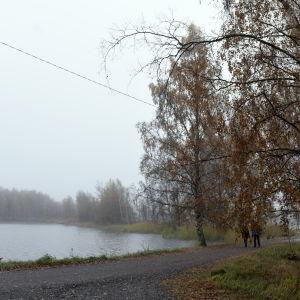 Dimma och höst vid Metviken i Vasa.