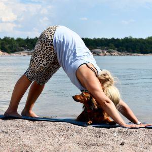 En kvinna i yogaställning, rumpan i vädret, en långhårig tax är med på yogamattan. Sandstrand, solsken, havet i bakgrunden.