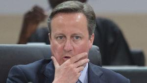 Storbritanniens premiärminister David Cameron på kärnsäkerhetskonferensen i Washington 1.4.2016