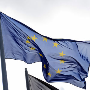 Europeiska unionens flagga