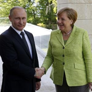 Vladimir Putin och Angela Merkel i Sotji.