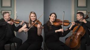 Kokkola-kvartetten