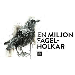 Kampanjen En miljon fågelholkar