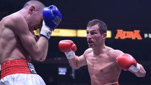 Francesco Patera och Edis Tatli i boxningsringen.