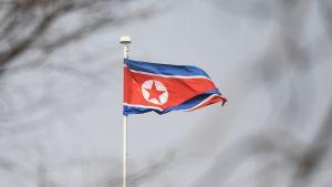 Nordkoreas flagga.