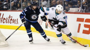 San Joses Tomas Hertl i duell med Winnipegs Josh Morrissey.