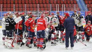 HIFK:s träningar 25.2.2016