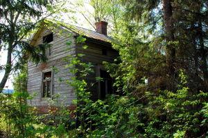 Förfallet hus omgivet av växtlighet