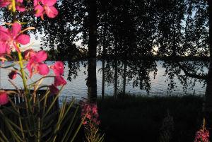 Järvimaisema Lestijärvellä