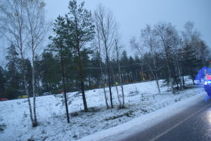 En olycksplats med utryckningsfordon skymtar bakom några träd.