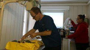 Veterinär Mikael Morelius (t v) förbereder en röntgenundersökning vid sin klinik i Sibbo.