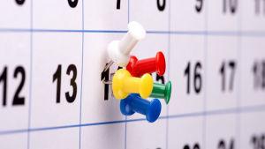 Nuppineuloja kalenterissa