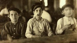 Tre pojkar som jobbar i en cigarrfabrik i Florida. Bilden togs 1909 av Lewis Hine.