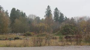 Borgå gamla avstjälpningsplats