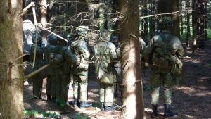 Beväringar i skog