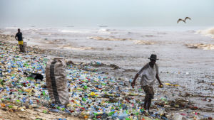 a Ghanaian collecting recyclable material at the polluted Korle Gono beach, that is covered in plastic bottles and other items washed ashore, following weeks of heavy flooding in Accra, Ghana 12 June 2016. The recyclable materials were washed from the cap