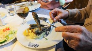 Strömming på en gaffel, på tallriken syns Salves logo. Caj Grönholm håller i gaffeln.
