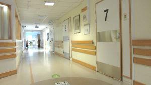 En sjukhuskorridor med många dörrar.