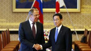 Utrikesministrarna Sergei Lavrov och Fumio Kishida skakar hand inför förhandlingarna om bland annat Kurilerna