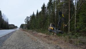Träd och sly röjs vid riksväg 8 för att förbättra sikten.
