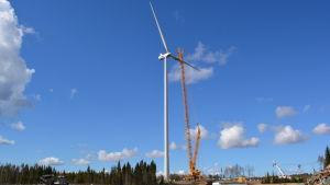 Vindkraftverk i Jeppo.