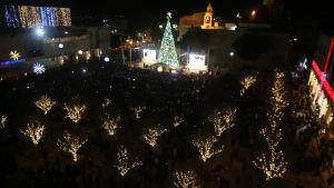 Julgran i Betlehem på Västbanken i Israel