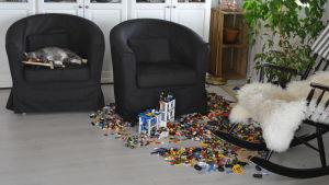 Katt sover i stol bland leksaker.