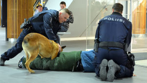 Två poliser och en polishund har fått ner en man på golvet i Rewell Center i Vasa.