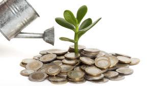 En kanna häller vatten på en hög med euromynt som en planta växer ut från.