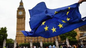 Pro brexit-demonstranter utanför parlamentet i London.