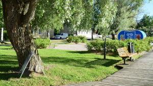 En grön och lummig park med en glasskiosk.