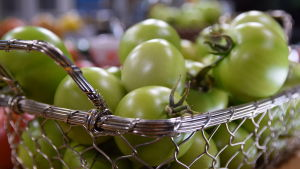 En metallkorg fylld med gröna tomater.