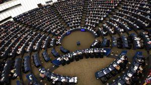 EU-parlamentariker i session i Strasbourg 14.6.2017.