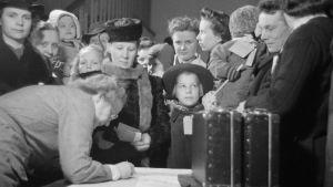 Trängsel på registreringskontoret när krigsbarn registreras för att skickas till Sverige