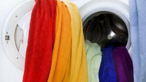 Handdukar i regnbågsflaggans färger hänger ut från en tvättmaskin.