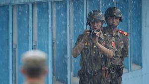 Nord- och sydkoreanska soldater står dag och natt några meter från varandra i stilleståndsbyn Panmunjom