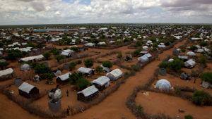 Dadaab i Kenya är världens största flyktingläger